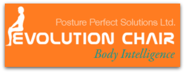 Image result for posture perfect ball chair logo stuff